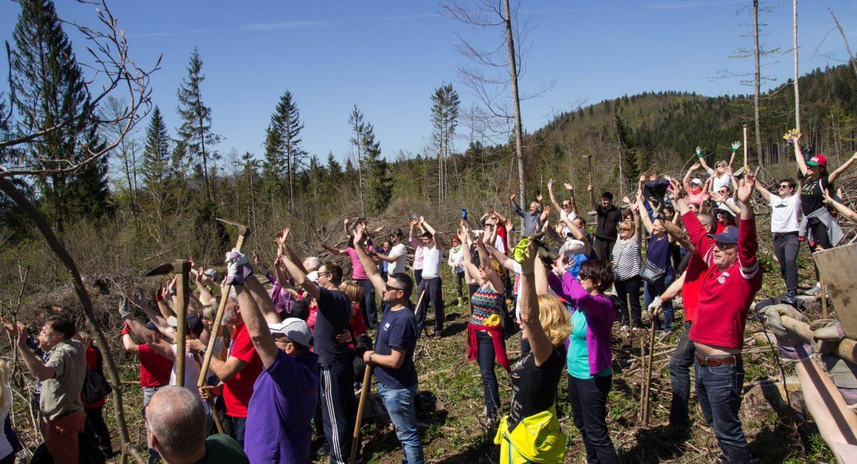 Rotarijanci posadili 3000 sadnica